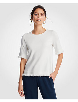 Fringe Sweater Tee by Ann Taylor