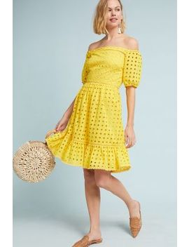 Shelby Eyelet Petite Dress by Donna Morgan