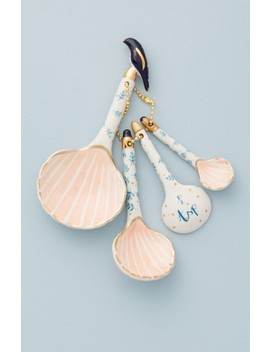 Seashell Measuring Spoon Set by Anthropologie