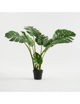 Faux Monstera Plant by World Market