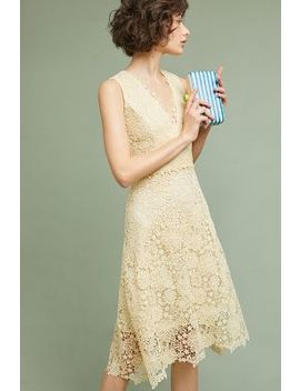 Daisy Lace Dress by Donna Morgan