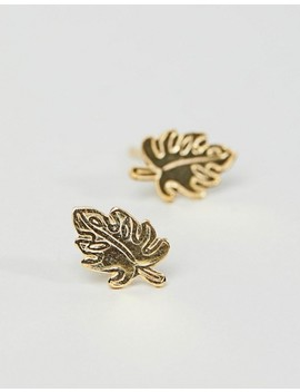 Asos Design Gold Plated Sterling Silver Palm Leaf Stud Earrings by Asos Design