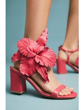 Cecelia New York Hibiscus Floral Heels by Cecelia New York