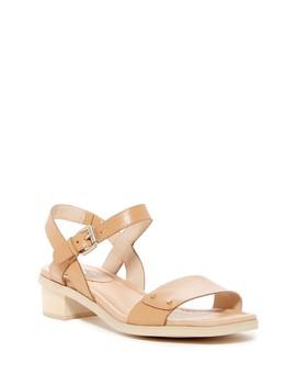 Wynne Strappy Sandal by Dr. Scholl's