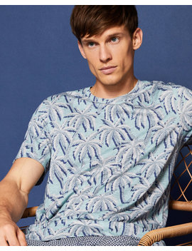 Palm Tree Print T Shirt by Ted Baker