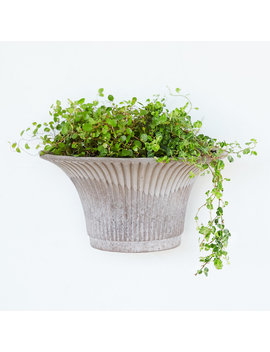 Købenler Hanging Wall Pot by Terrain