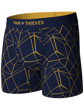 Men's Fractal Printed Boxer Briefs by Pair Of Thieves