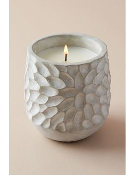 Chrysanthemum Citronella Candle by Illume
