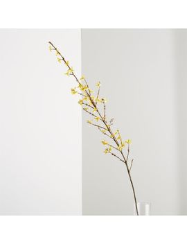 Forsythia Flower Stem by Crate&Barrel