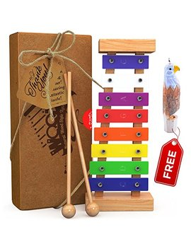 Wooden Xylophone For Kids: Perfectly Sized Musical Toy For Kids   With Clear Sounding Metal Keys, Two Child Safe Wooden Mallets And A Free Eagle Whistle For Music Making Fun by A Great Life