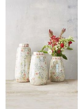 Rose & Vine Terracotta Vase by Anthropologie