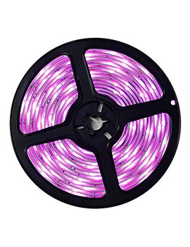Wigbow Pink Led Strip Light Lit,Waterproof 16.4ft 5 M 150 Leds Pink Rope Lights,Indoor Outdoor Lighting Rope Dimmable With Remote,For Bedroom Bar Car Interior Tv Backdrop Wall by Wigbow