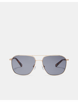 Double Bridge Sunglasses by Ted Baker