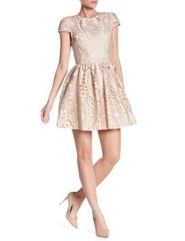 Gracia Cap Sleeve Lace Dress by Alice + Olivia