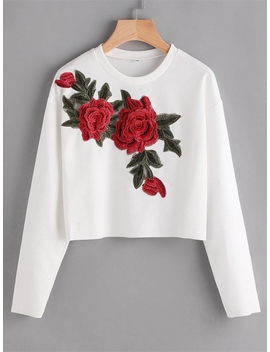 White O Neck Long Sleeve Embroidery Applique Slim Fit Crop Top by Dress Link