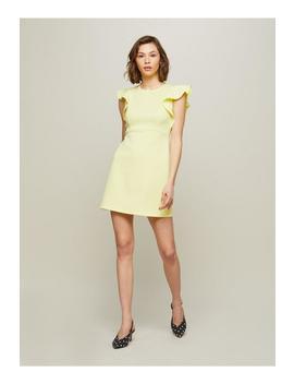 Frill Sleeve A Line Dress by Miss Selfridge