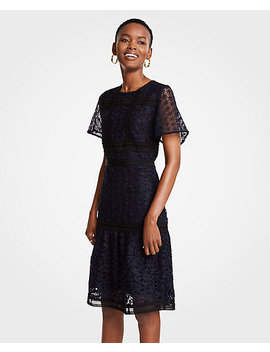 Mixed Lace Flare Dress by Ann Taylor