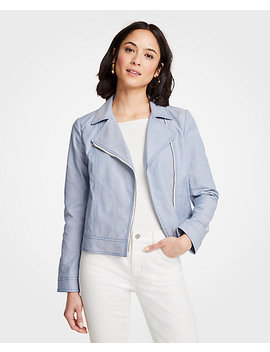 Canvas Moto Jacket by Ann Taylor