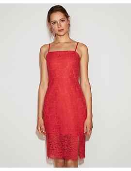 Red Lace Sheath Dress by Express