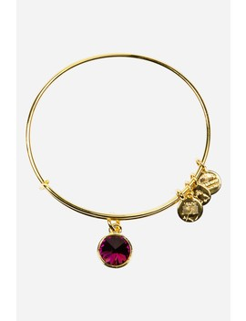 February Crystal Birthstone Expandable Wire Bangle by Alex And Ani
