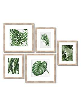 Green Palm Leaf Framed Wall Art 5 Piece Set by Kohl's