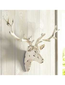 Whitewashed Deer Head Wall Decor by Pier1 Imports