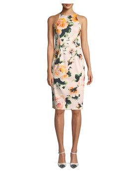 Montego Rose Print Halter Sheath Dress by Black Halo