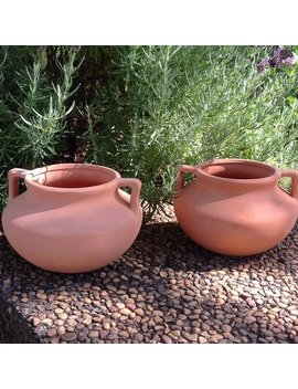 Winston Porter Culley Round Terracotta Pot Planter & Reviews by Winston Porter