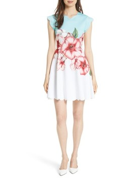 Maevea Nectar Skater Dress by Ted Baker London