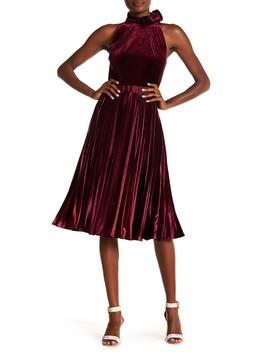 Pleated Velvet Midi Dress by Ted Baker London