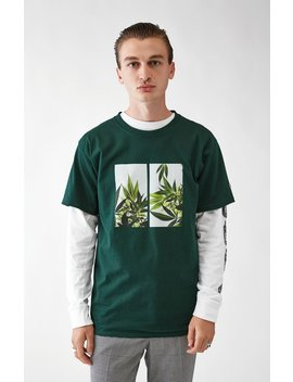 Creators Series Forest T Shirt by Pac Sun