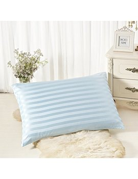 Alaska Bear Natural Silk Pillowcase, Hypoallergenic, 19 Momme, 600 Thread Count 100 Percent Mulberry Silk, Queen Size With Hidden Zipper (1, Blue Stripe) by Alaska Bear
