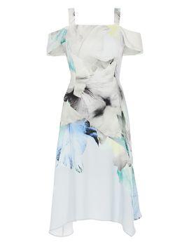 Mace Print Soft Shift Dress by Coast