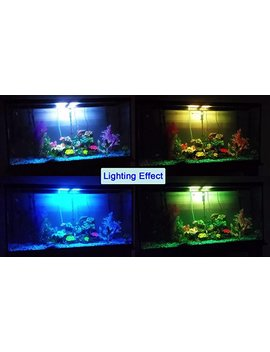 Coodia Aquarium Hood Lighting Color Changing Remote Controlled Dimmable Rgbw Led Light For Aquarium/ Fish Tank, Extendable (For Fresh And Salt Water) by Amazon