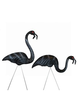 United Solutions 62363 Zombie Flamingos, Pair In Display by Union