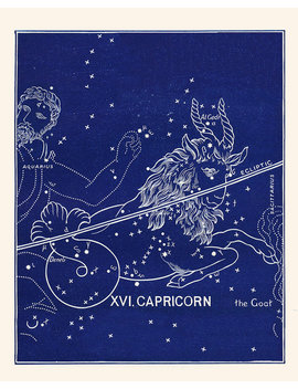 Zodiac Constellation Capricorn, Capricorn Print Antique Vintage Astrological Sign, Capricorn Zodiac, Birthday Gift For Capricorn by Etsy