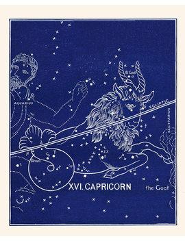 Zodiac Constellation Capricorn, Capricorn Print Antique Vintage Astrological Sign, Capricorn Zodiac, Birthday Gift For Capricorn by Etsy