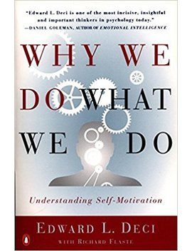 Why We Do What We Do: Understanding Self Motivation by Edward L. Deci